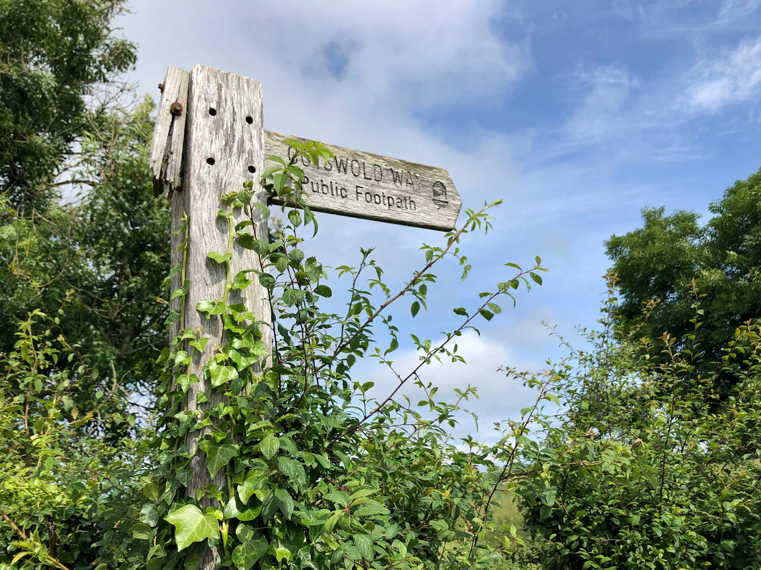 Signpost 'cotswold way'